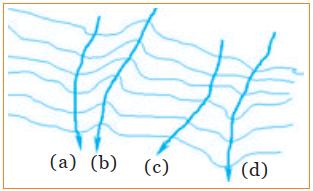 Contoh soal tentang pola aliran sungai pilihan ganda