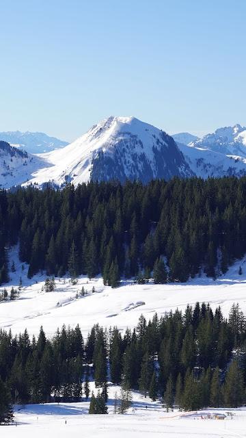 Montanhas, Neve, Árvores, Inverno, Vista Aérea
