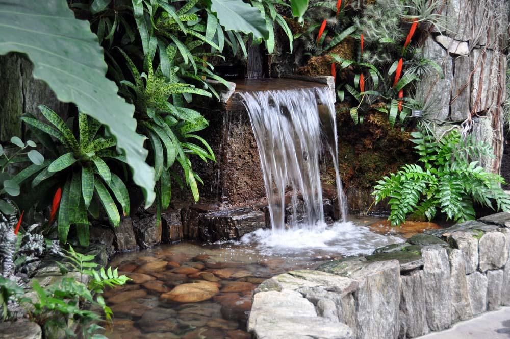 cascada de agua y plantas tropicales