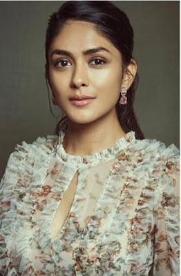Mrunal Thakur Wiki,Biography
