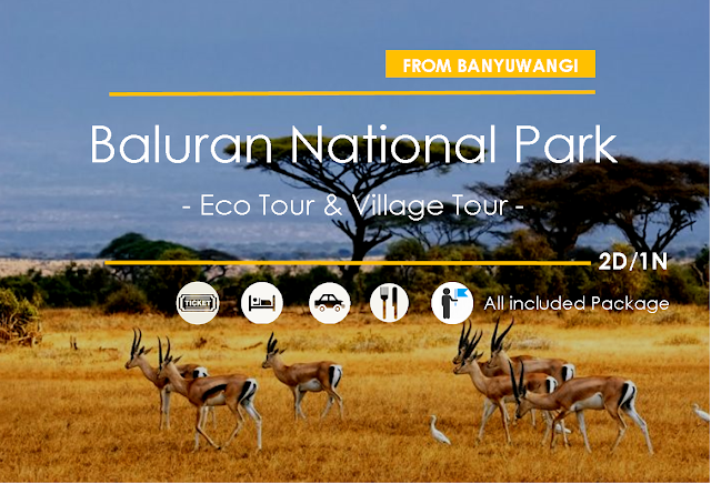 Baluran NP - Eco Tour and Village Tour [2D/1N]
