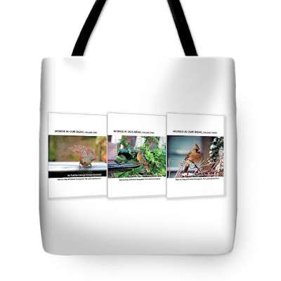 "This photo features one of the tote bags I have designed. The one here has a has a white background.  The item is made of poly-poplin.  My totes come in three sizes (13"" by 13,"" 16"" by 16,"" and 18"" by 18"") each item the one seen here is 16"" by 16.""  Each tote includes a one inch strap for easy carrying on your shoulder. All seams are double stitched for added durability. These are machine washable (in cold water) and the same image (in this case that image is of the book jackets for my three volume book series, ""Words In Our Beak.""**) is printed on both sides.  *Info re this tote is @ https://bit.ly/3bGkQhG **Info re these books is @ http://bit.ly/2EdADpx"
