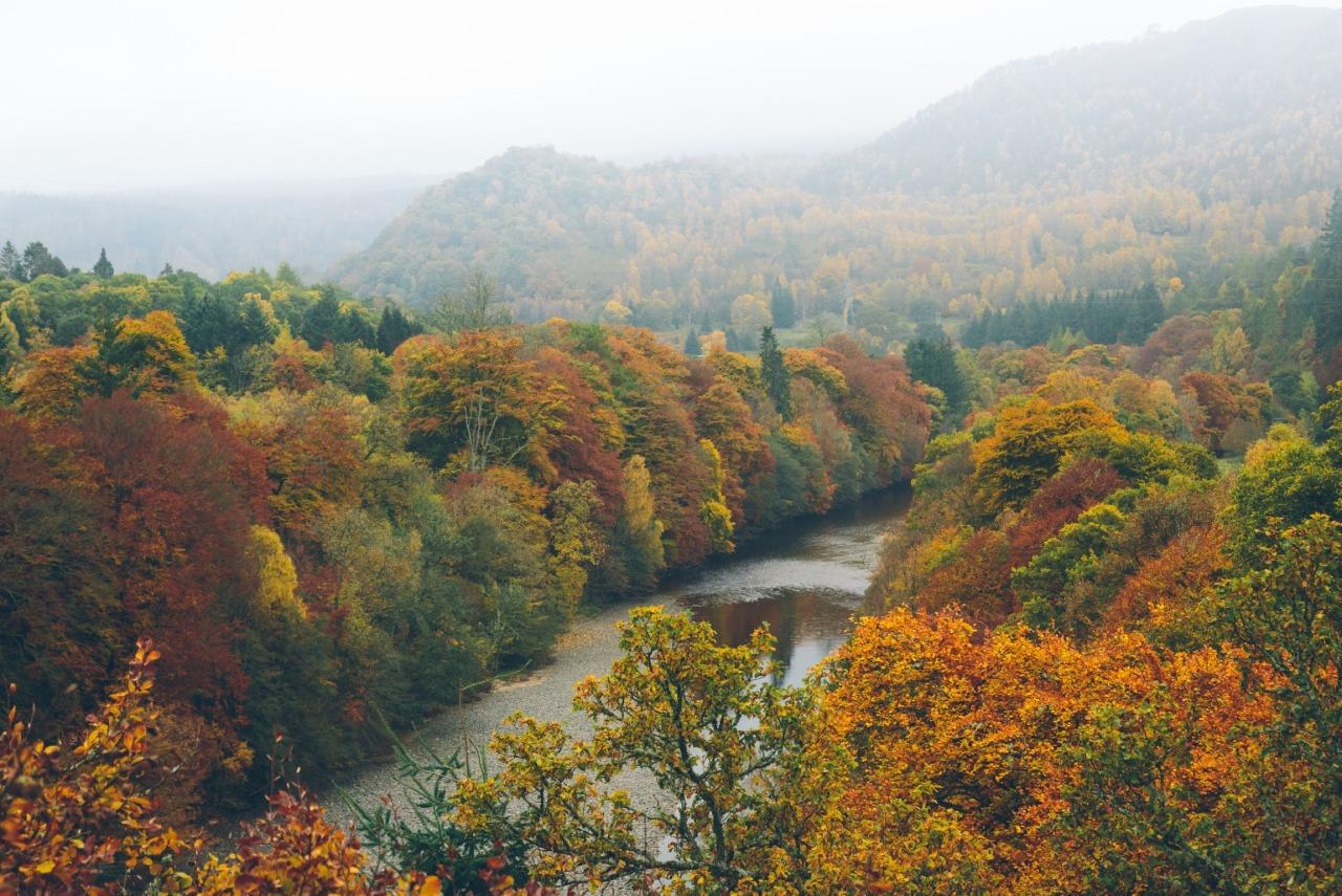 Top 45+ Hình Nền Máy Tính Phong Cảnh Thiên Nhiên Mùa Thu Đẹp Nhất