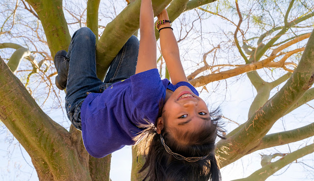 Girl Scout climbing on a tree