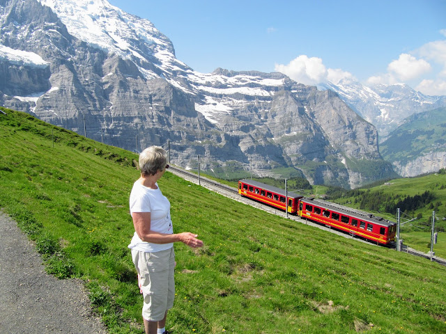 Jungfraujoch train, Bernese Oberland