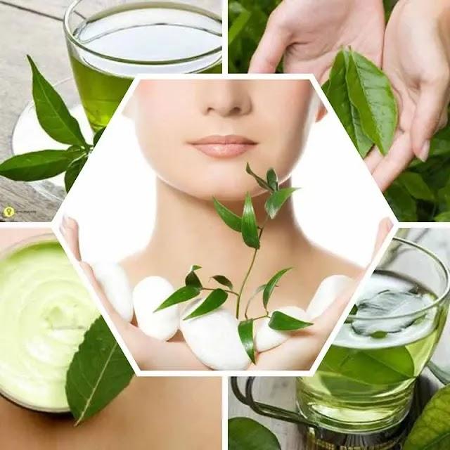 كيف تستفيد من فوائد الشاي الأخضر