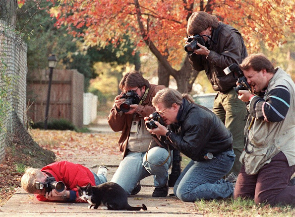 Press photographers surround Socks, the Clinton family cat, in Little Rock, Ark., in 1992