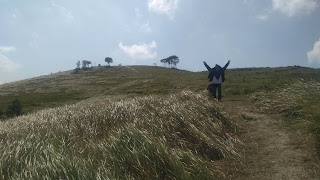 bukit teletubbies