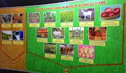 Important agriculture extension related terms and their place of origin