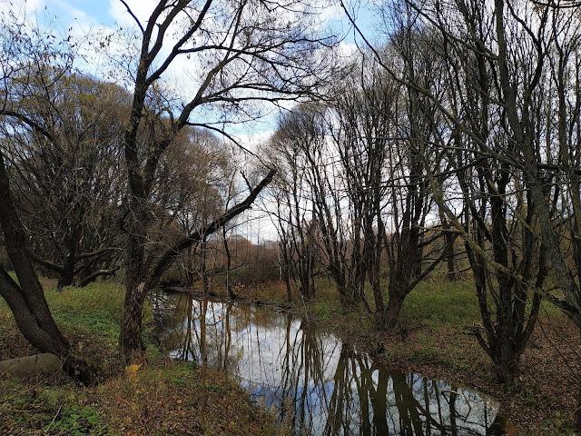 Измайловский парк. Красный ручей.