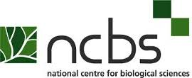 NCBS Cell/Molecular Biology Graduate Trainee Openings |  Rs. 31000 + 24% HRA