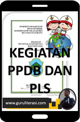 Skema P4 Kegiatan PPDB SD 2019