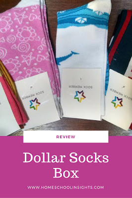 Dollar Socks Box Review