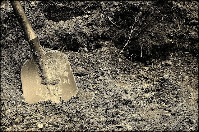 Digging in the Dirt -- Part One: --How Did I Get Here? My Amazing Genealogy Journey