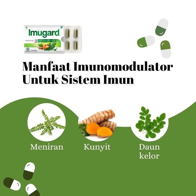 Manfaat Imunomodulator Untuk Sistem Imun