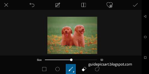 PicsArt Selection Tool