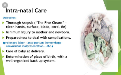 Intranatal Care  (INC)