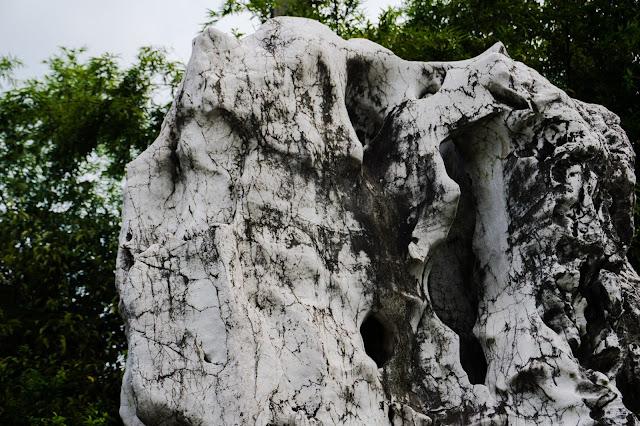 Taihu Stone 5