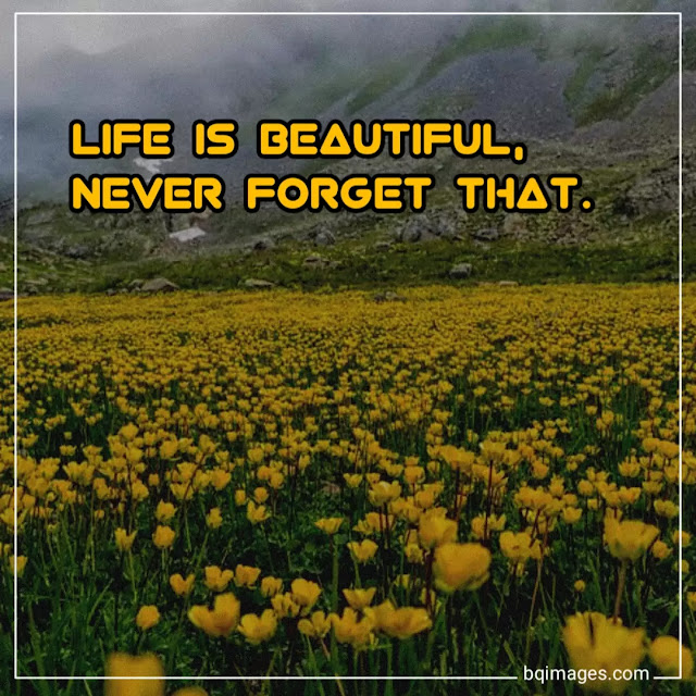 life is beautiful images with quotes