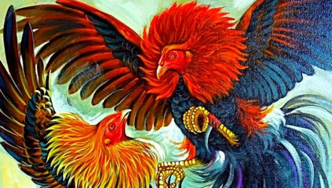 93 Gambar Lucu Ayam Paling Hist