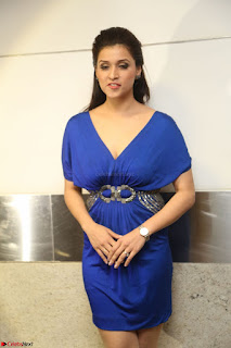 Mannara Chopra in Short Blue Dress at Rogue Movie Teaser Launch 1st March 2017 131.JPG