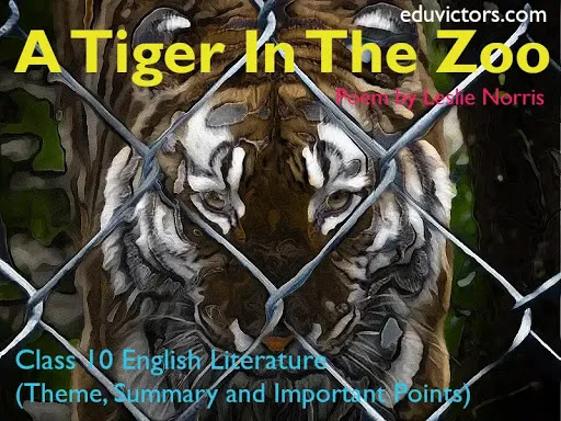 Poem: A Tiger In The Zoo (Theme, Summary and Important Points)-CBSE Class 10 - English Literature (First Flight) - (#eduvictors)(#class10English)(#cbse2020)