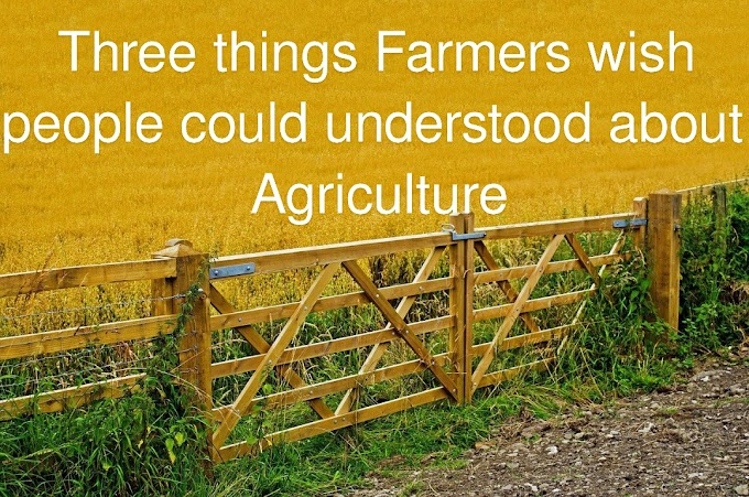 Three things Farmers wish people could understood about agriculture