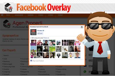 Facebook Overlay