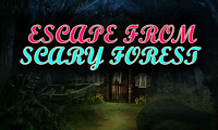 Top10NewGames - Top10 Escape From Scary Forest