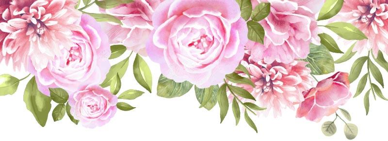 Za šta je ružina voda dobra, ružina vodica benefiti, ružina voda za negu lica, Royal Balm prirodna kozmetika, hidrolat ruže