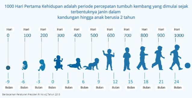fase perkembangan anak dalam 1000 hari kehidupan