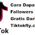 Tiktokfly.com | Cara dapatkan Followers TikTok Gratis dari Tiktokfly .com