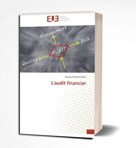 L'audit financier de Moulay El Mehdi Falloul PDF