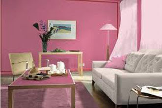 warna cat ruang tamu 2 warna pink