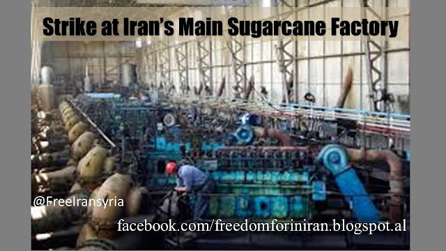 Strike at Iran's Main Sugarcane Factory
