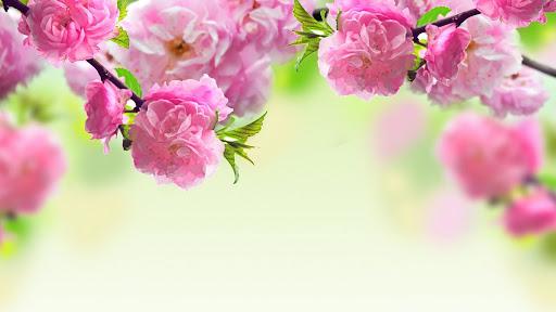 mjesečni-horoskop-astrologija-horoskop_za_april