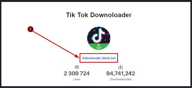 statistik akun tiktok bot downloader di tele
