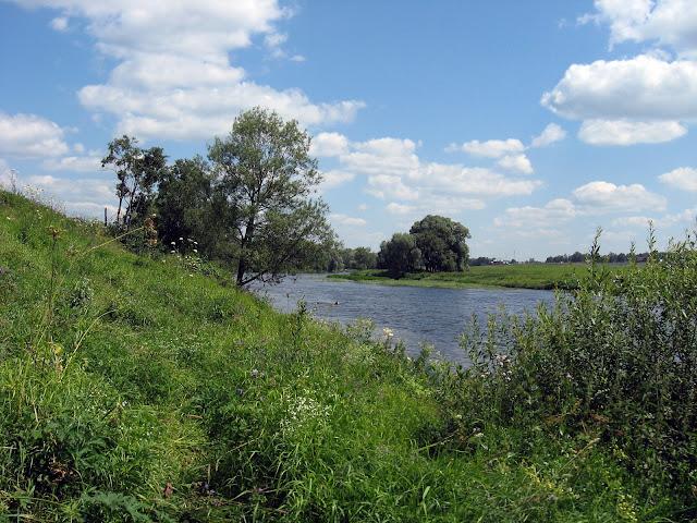 Река и поле