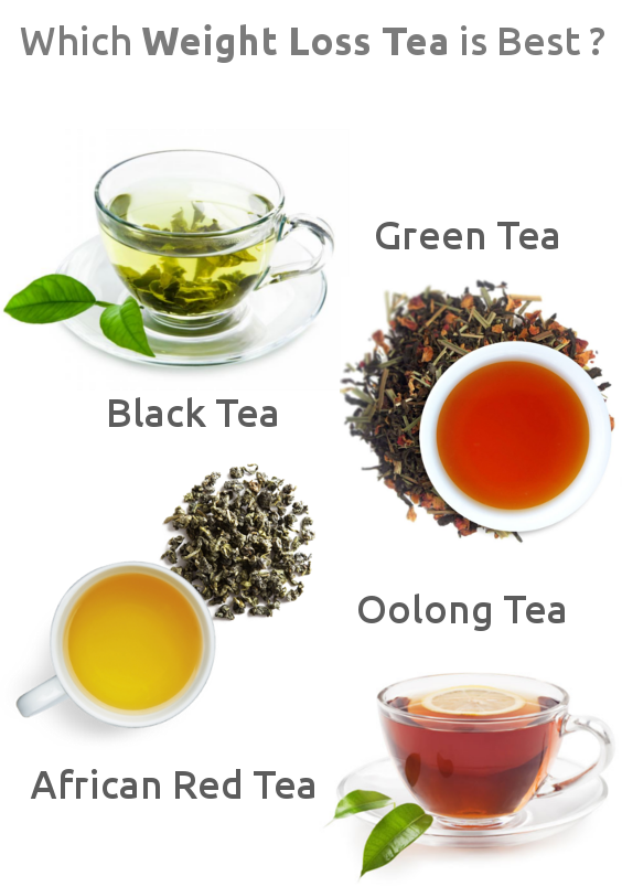 Which Weight Loss Tea is Best