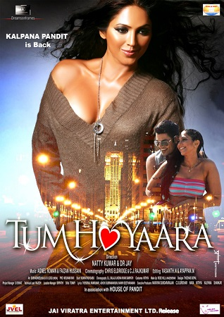 Poster Of Tum Ho Yaara 2011 Hindi 720p HDRip ESubs Free Download Watch Online