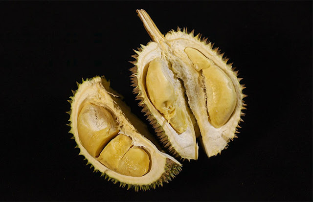 Amankah Durian Untuk Penderita Kolesterol