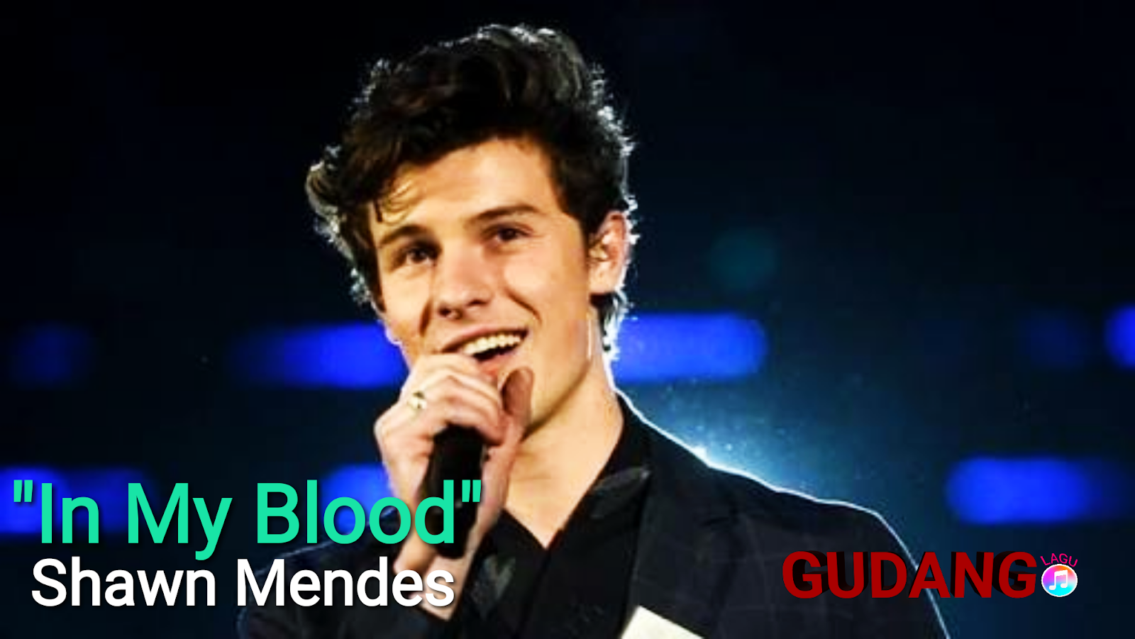 Shawn Mendes - In My Blood