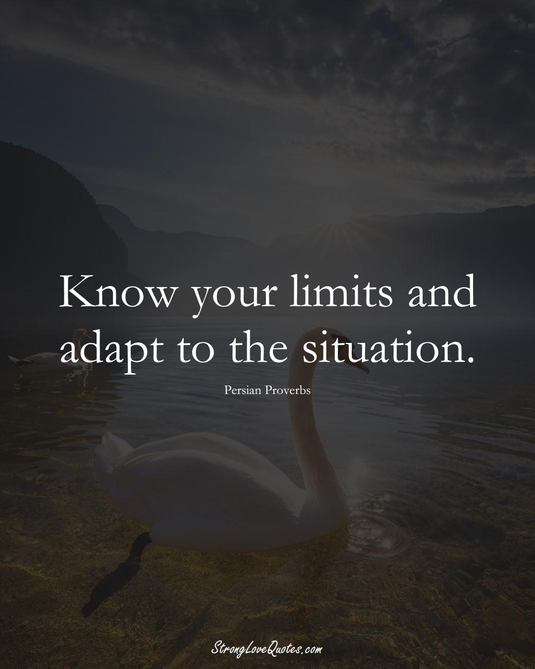 Know your limits and adapt to the situation. (Persian Sayings);  #aVarietyofCulturesSayings