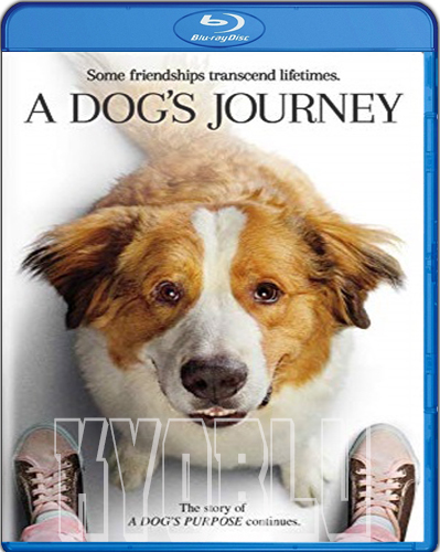 A Dog's Journey [2019] [BD50] [Latino]