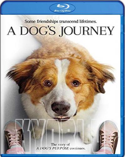 A Dog's Journey [2019] [BD50] [Latino]