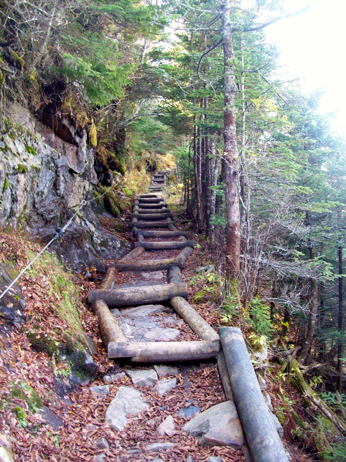900 miles: Trillium Gap Trail