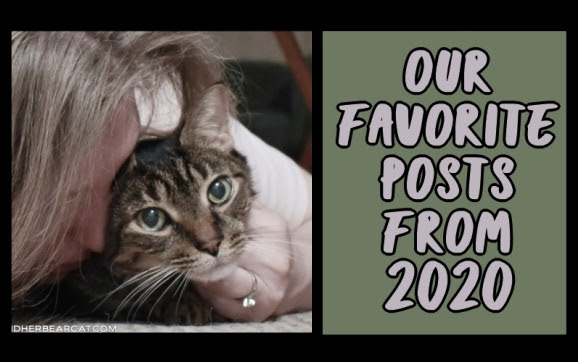 Our favorite posts from 2020