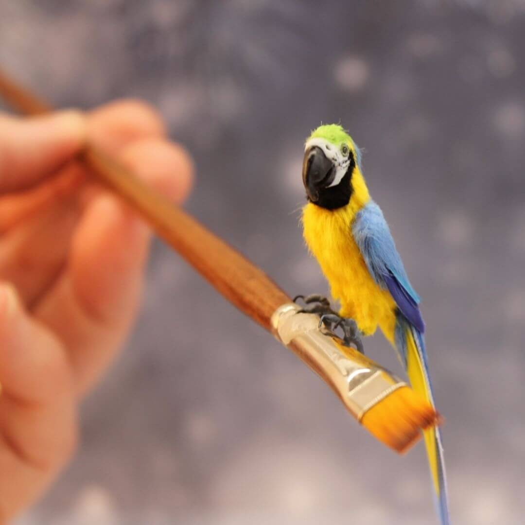 08-Blue-Gold-Macaw-Katie-Doka-Hand-Sculpted-Dollhouse-Miniature-Animals-www-designstack-co