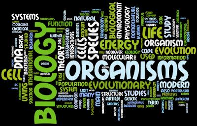 Cabang – Cabang Ilmu Biologi