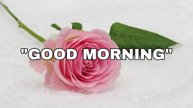 indian good morning images